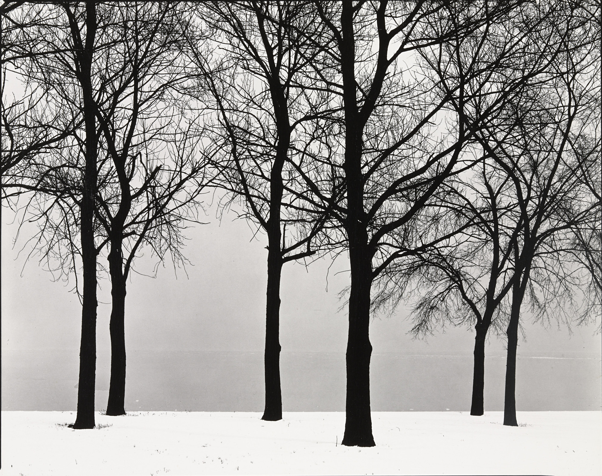 Harry Callahan. Chicago. c. 1950