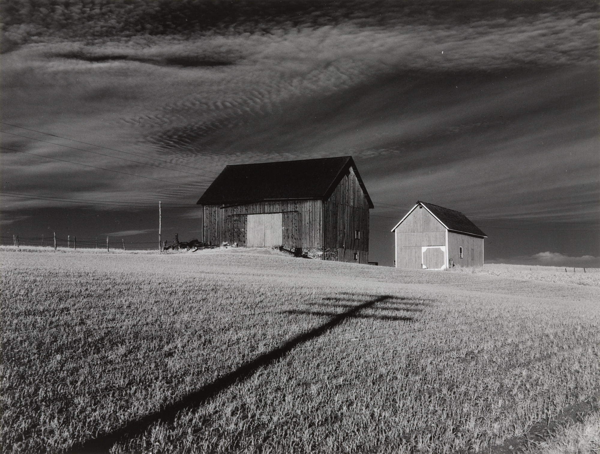 Minor White. Two Barns and Shadow. 1955