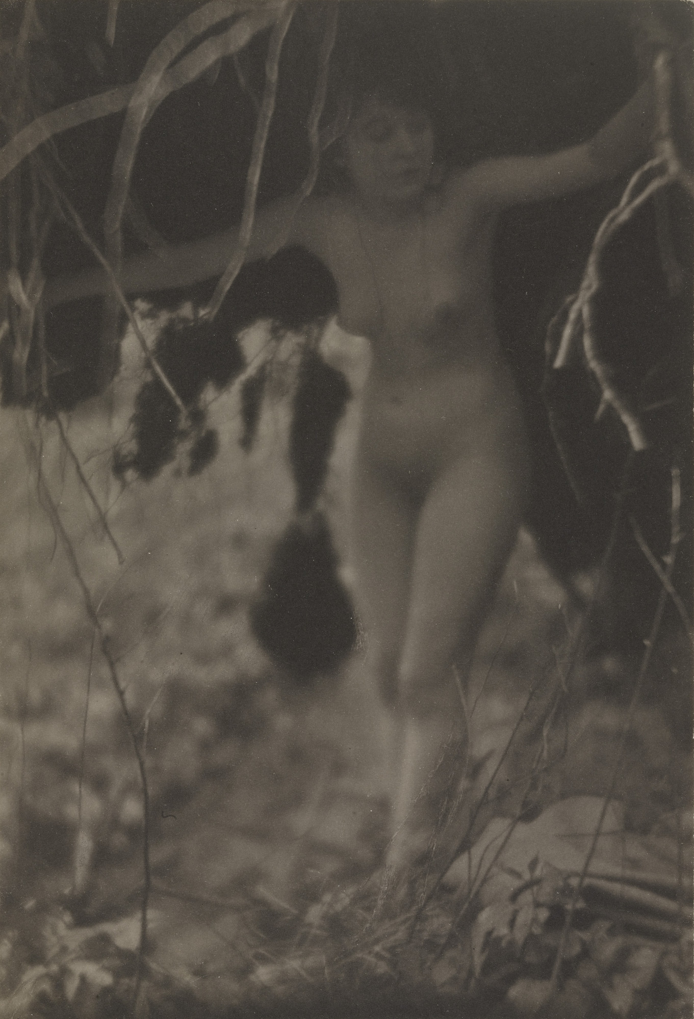 Clarence H. White. Nude. 1908