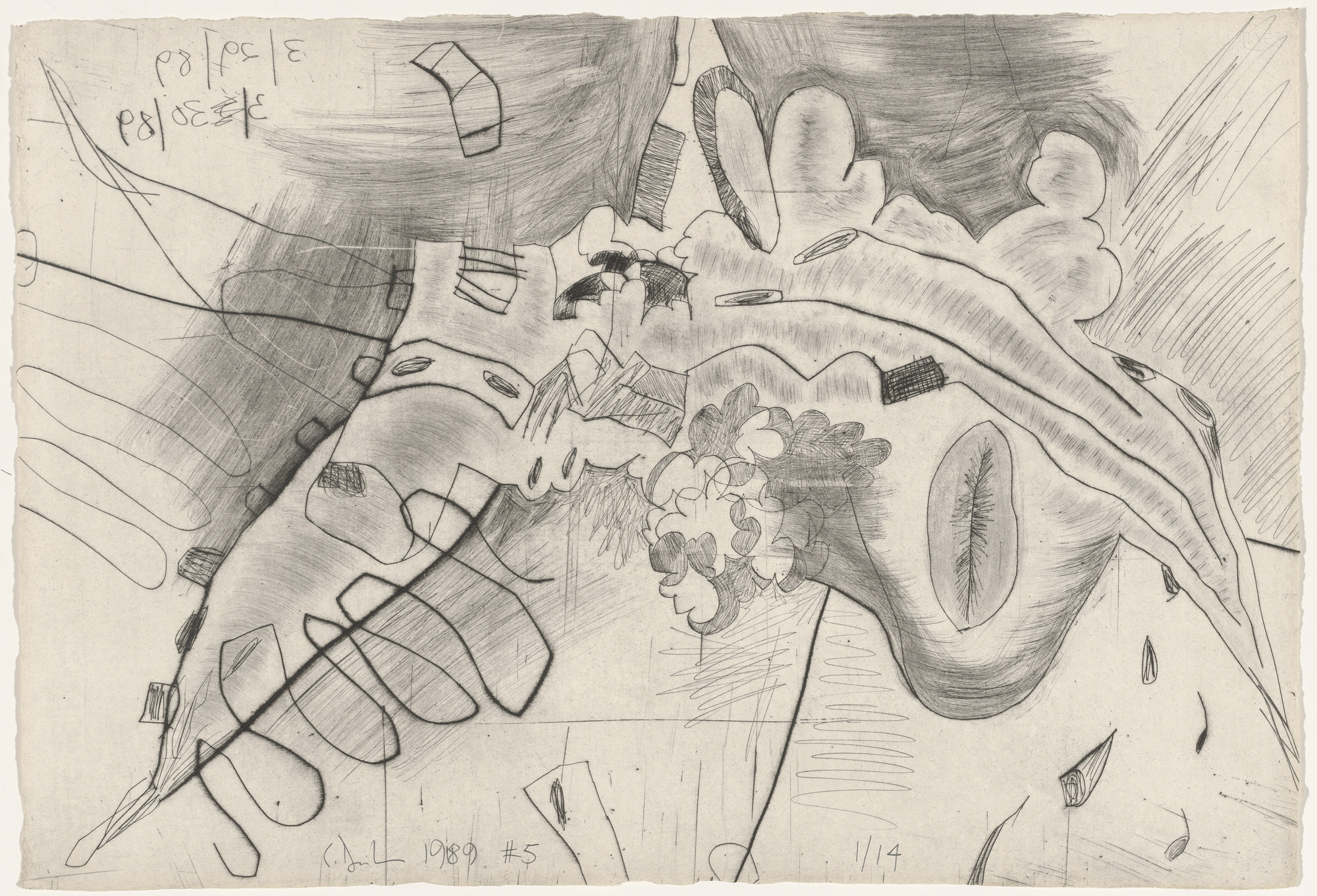 Carroll Dunham. Untitled from Shadows. 1989