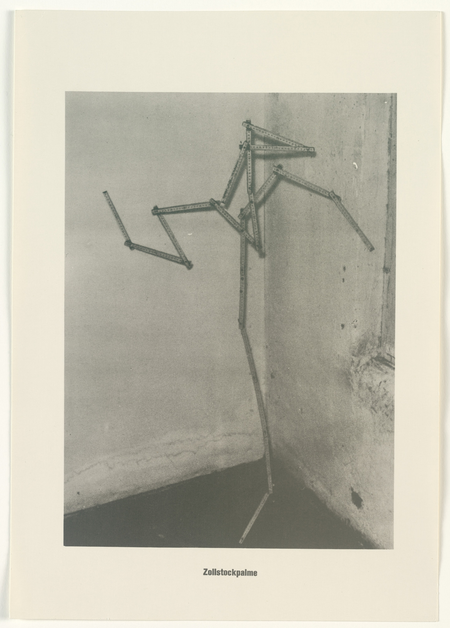 Sigmar Polke, Christof  Kohlhöfer. Measuring Stick Palm Tree (Zollstockpalme) from The Palm Tree Series (Palmenserie) from .....Higher Beings Ordain (.....Höhere Wesen befehlen). 1966, published 1968