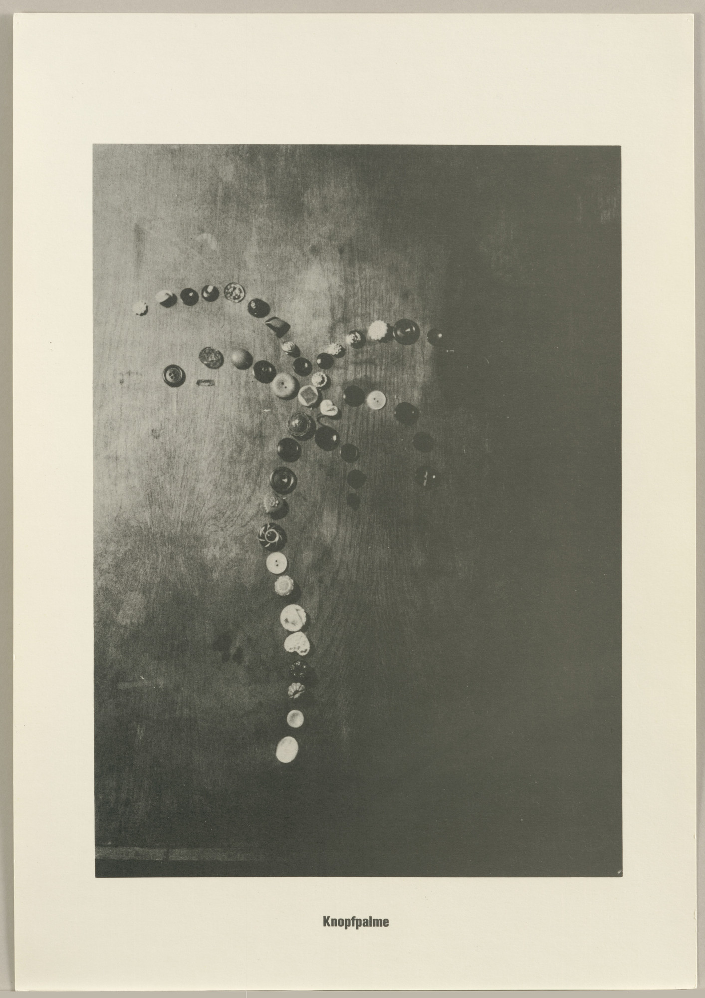 Sigmar Polke, Christof  Kohlhöfer. Button Palm Tree (Knopfpalme) from the Palm Tree Series (Palmenserie) from .....Higher Beings Ordain (.....Höhere Wesen befehlen). 1966, published 1968