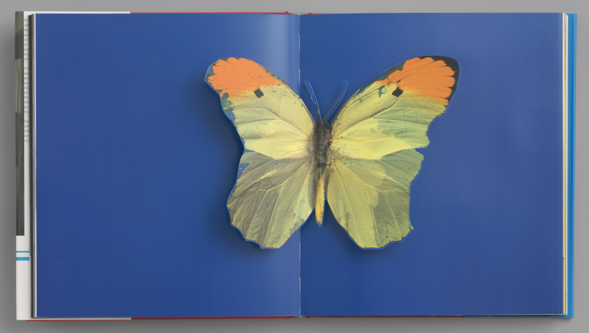 Damien Hirst. I Want to Spend the Rest of My Life Everywhere, with Everyone, One to One, Always, Forever, Now. 1998 (first edition 1997)