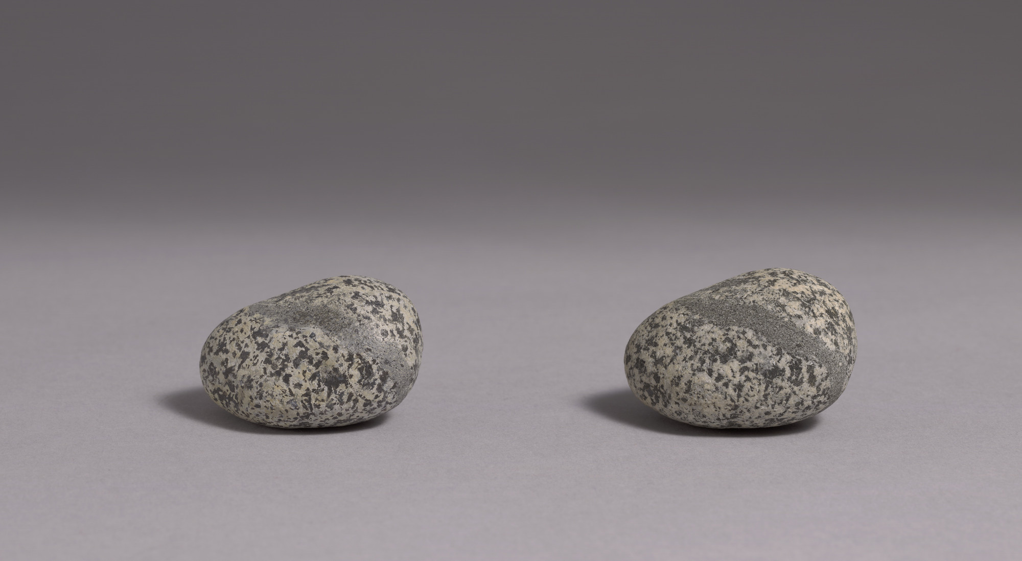Vija Celmins. To Fix the Image in Memory. 1977-82