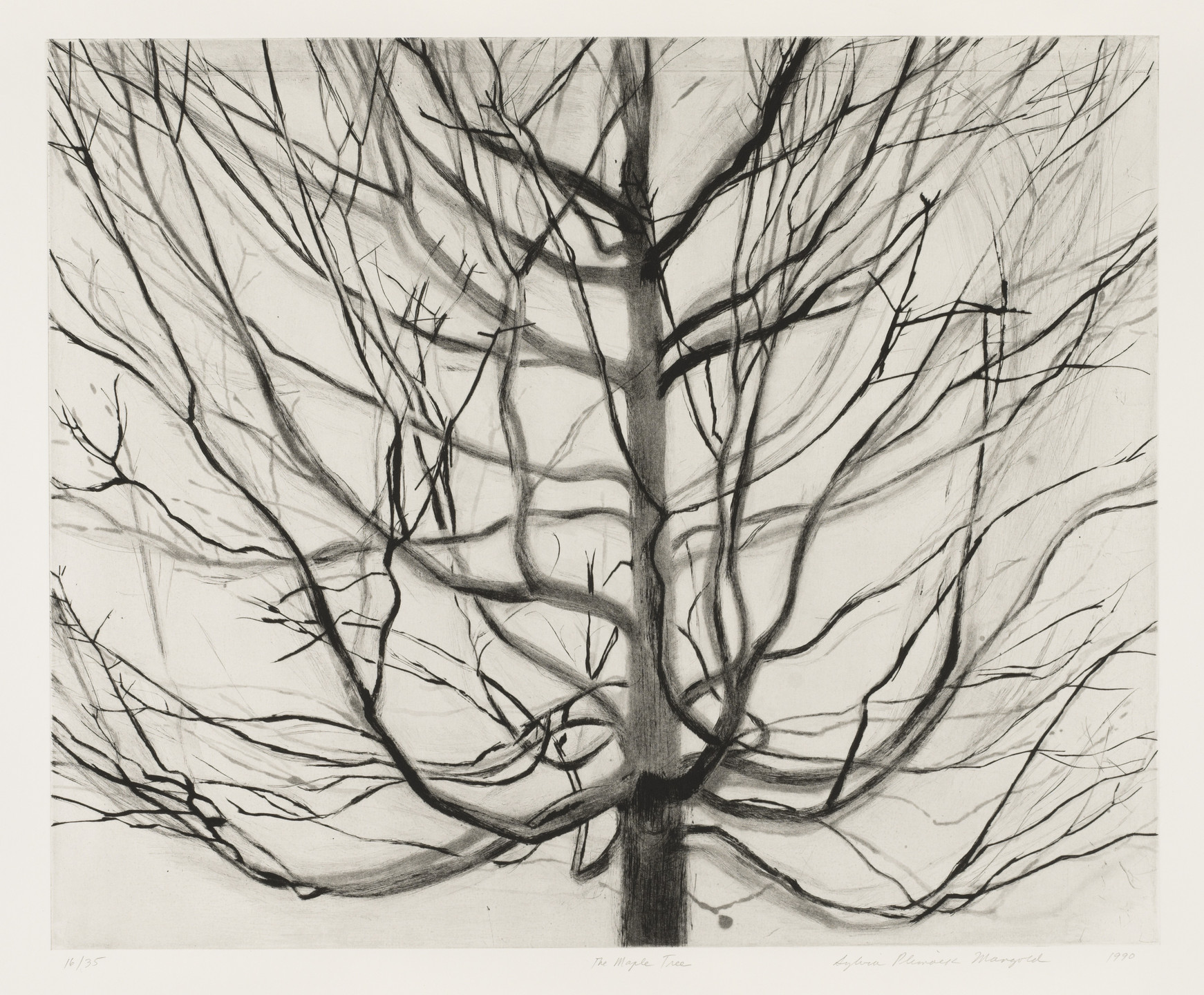 Sylvia Plimack Mangold. The Maple Tree. 1990