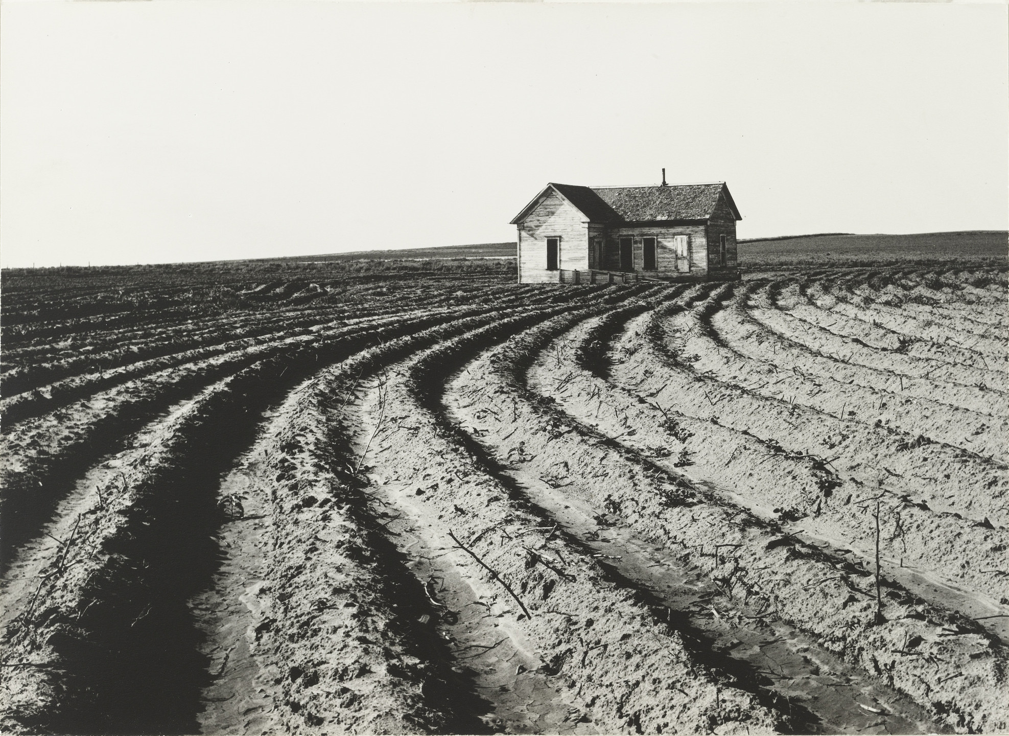 Dorothea Lange. Tractored Out, Childress County, Texas. June 1938