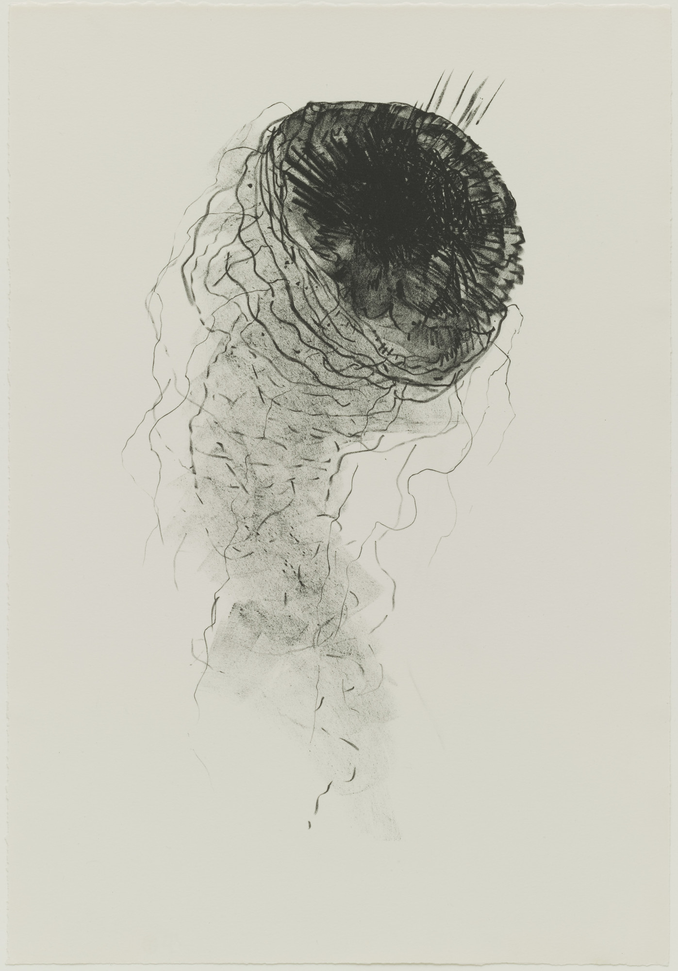Bruce Conner. Jelly Fish. April 12-28, 1965 | MoMA