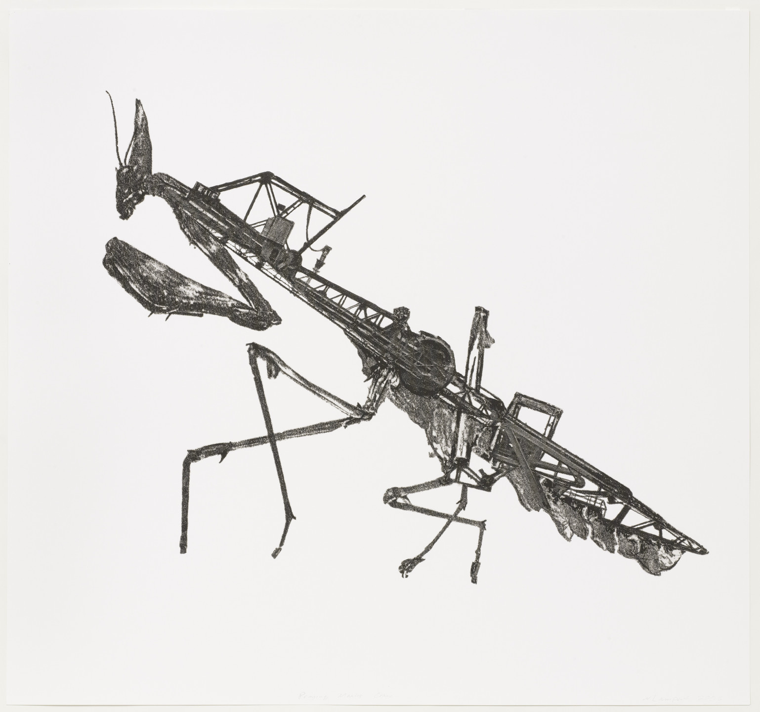 Nicolas Lampert. Praying Mantis Crane. 2006
