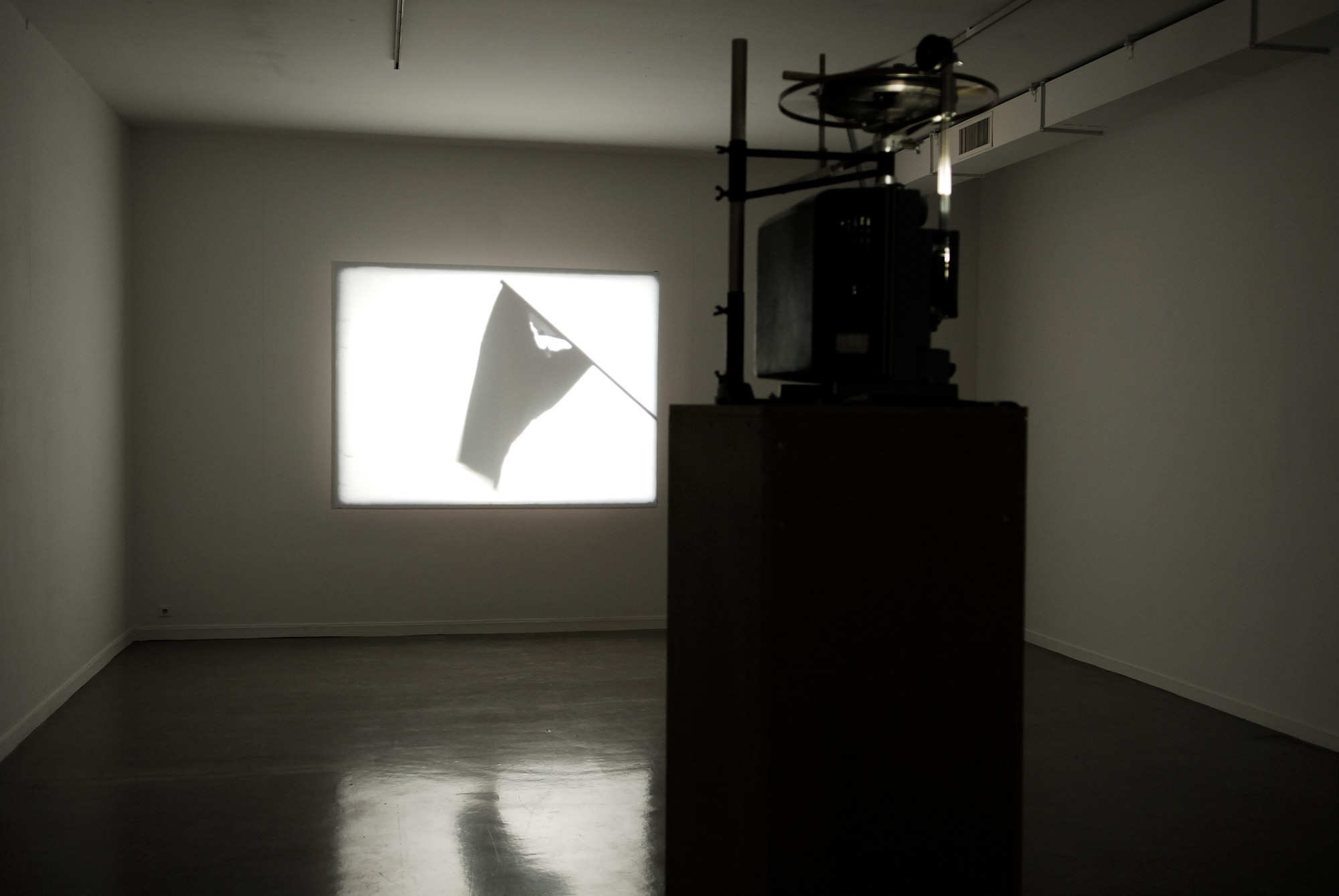 Mircea Cantor. Shadow for a While. 2007