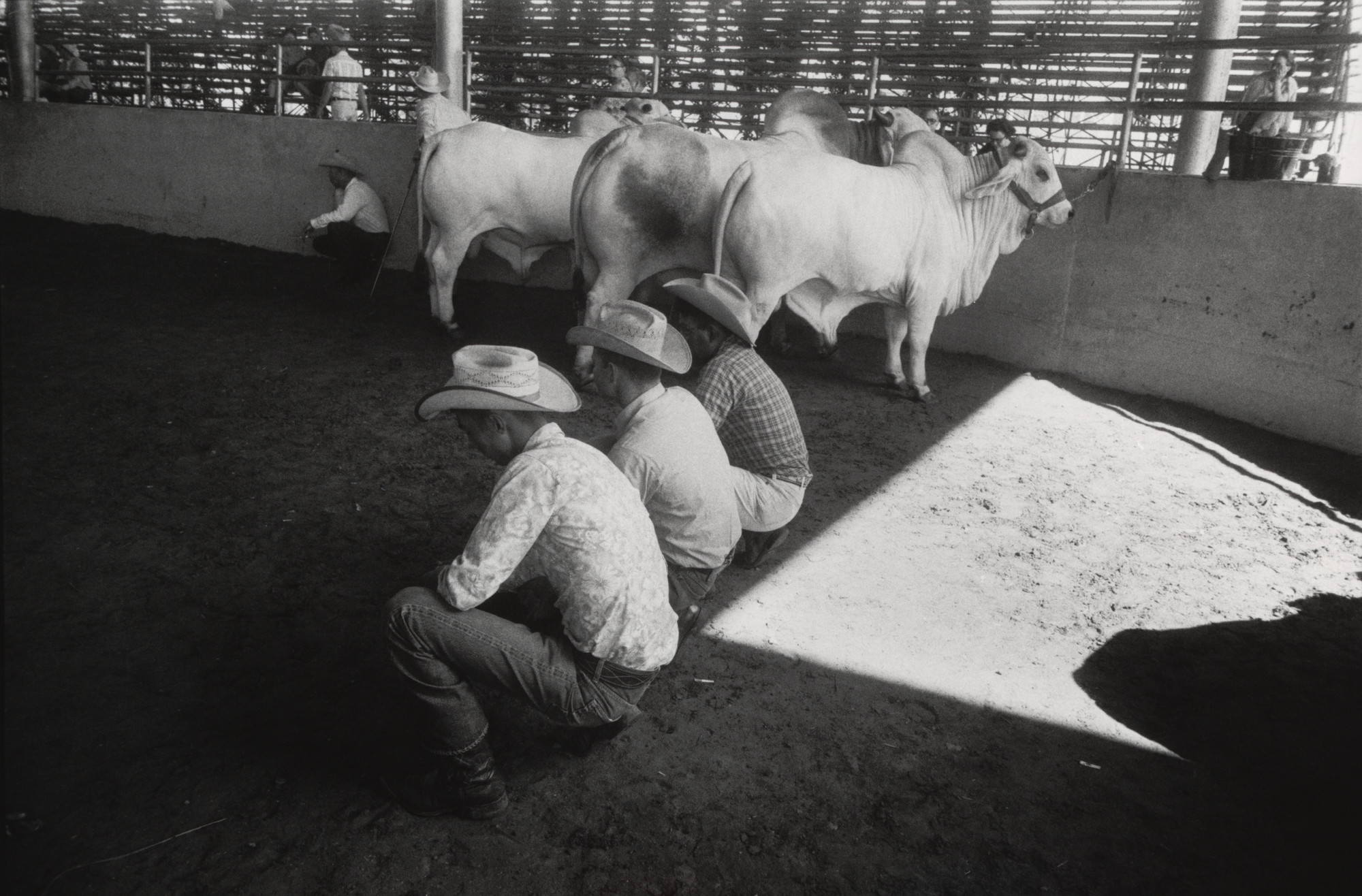 Garry Winogrand. State Fair of Texas, Dallas. 1964