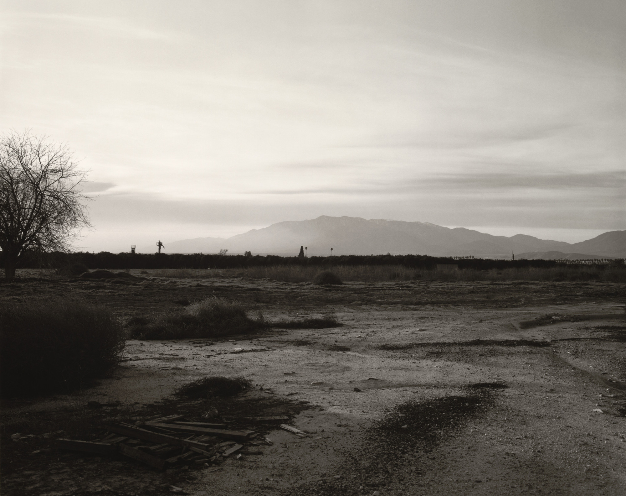 Robert Adams. Area Recently Cleared of Citrus Groves, Redlands, California. 1982