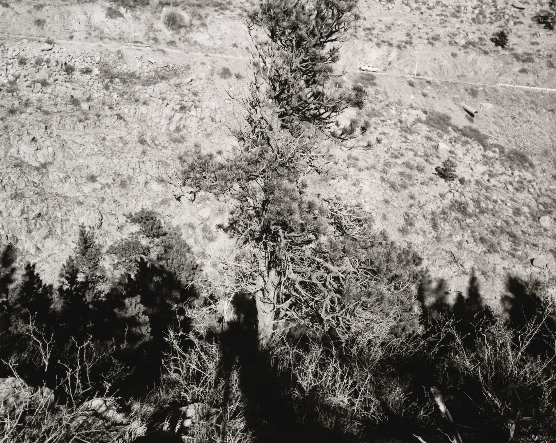 Robert Adams. Federal Highway 36, North St. Vrain Canyon, Larimer County, Colorado. 1979