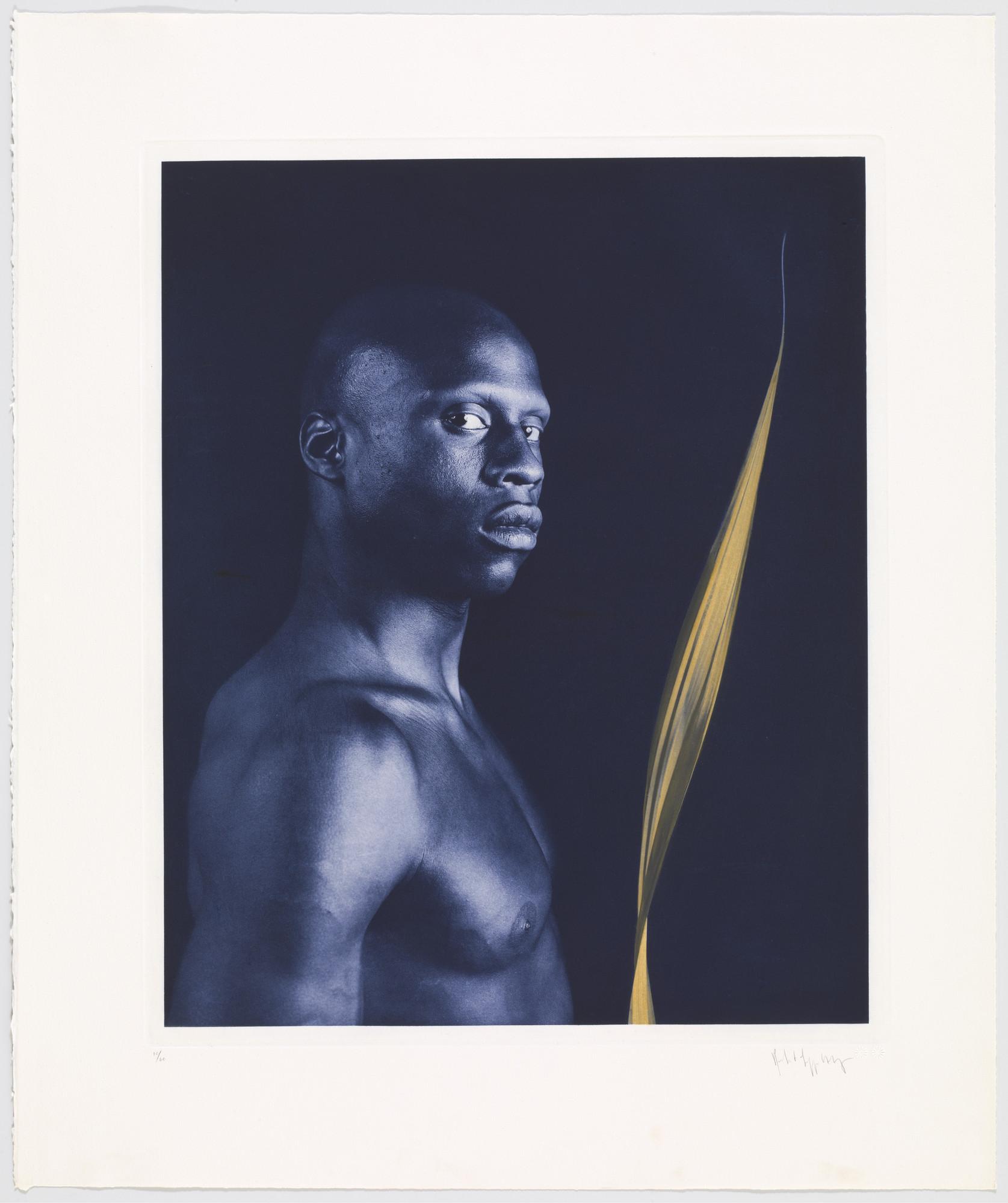 Robert Mapplethorpe. Untitled from the Ken Moody Portfolio. 1985 | MoMA