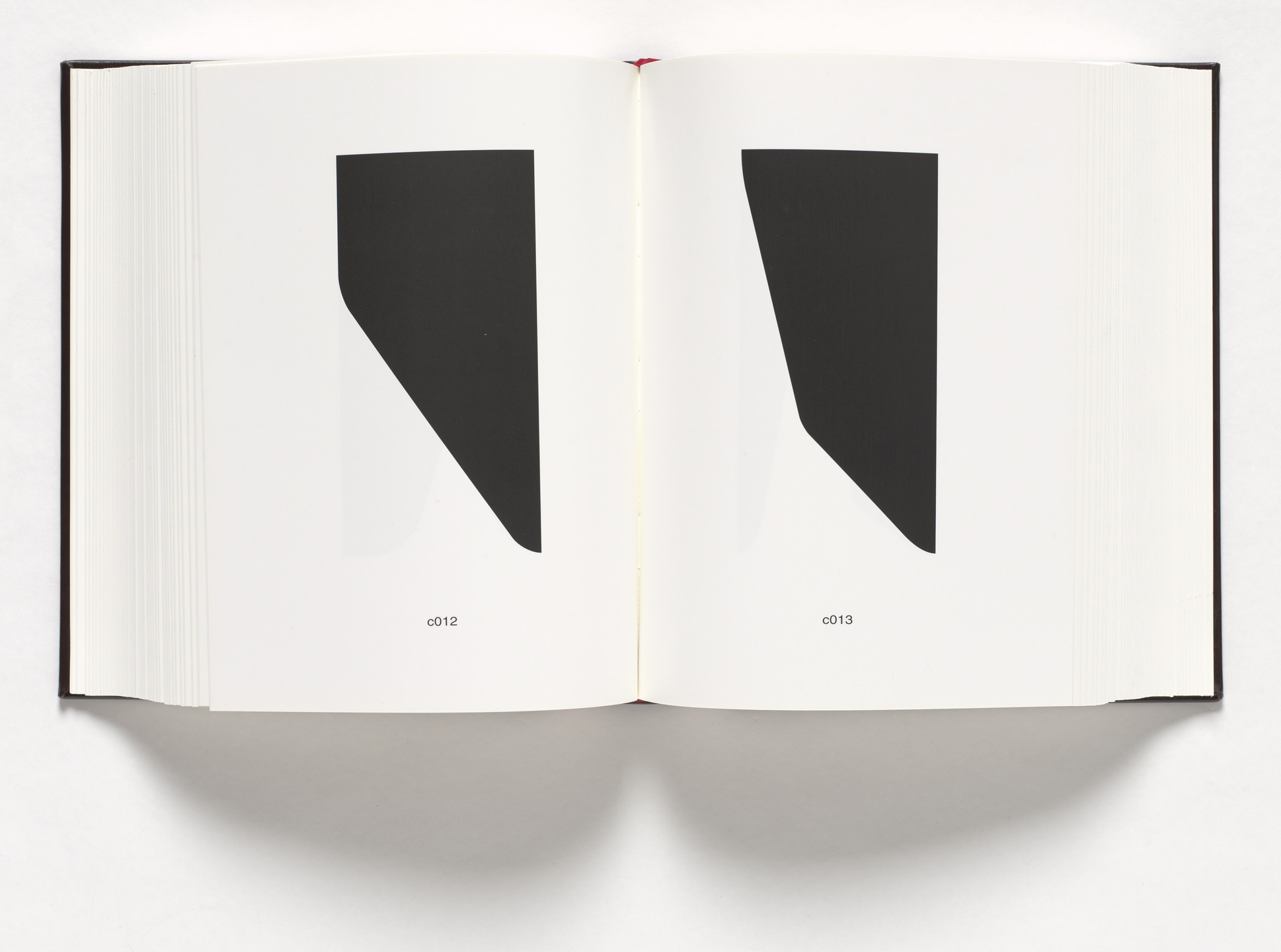 Allan McCollum. The Book of Shapes. 2010