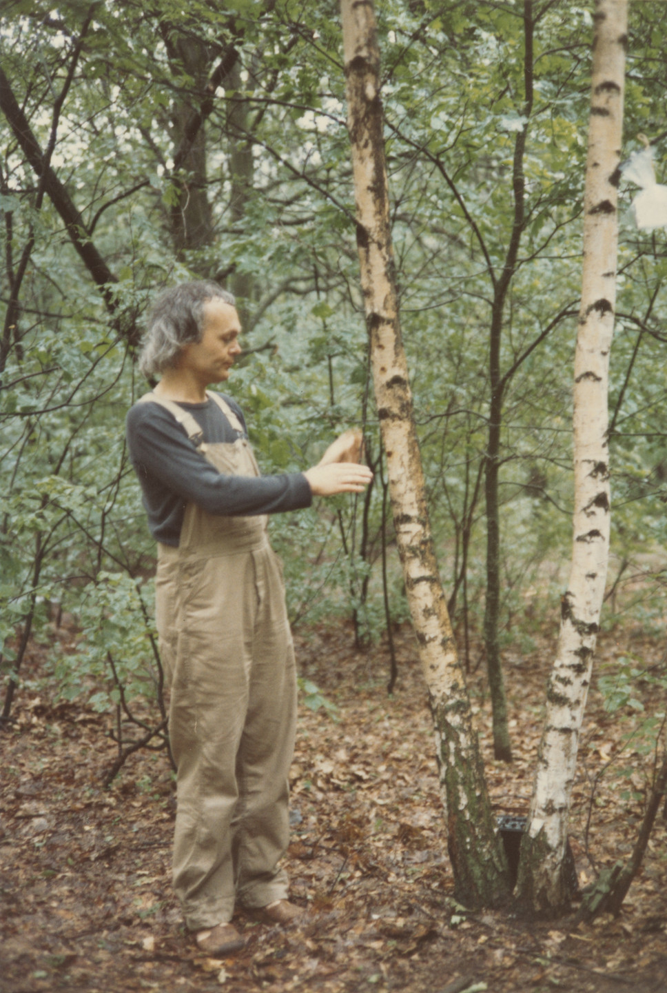 Milan Knížák. Friendship with a tree from Performance Files. 1980