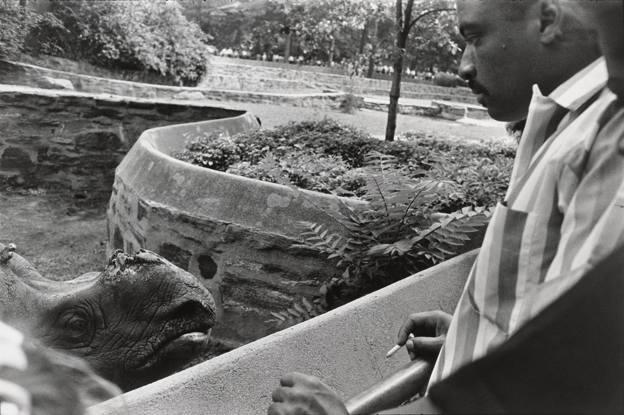 Garry Winogrand. Bronx Zoo, New York. 1963