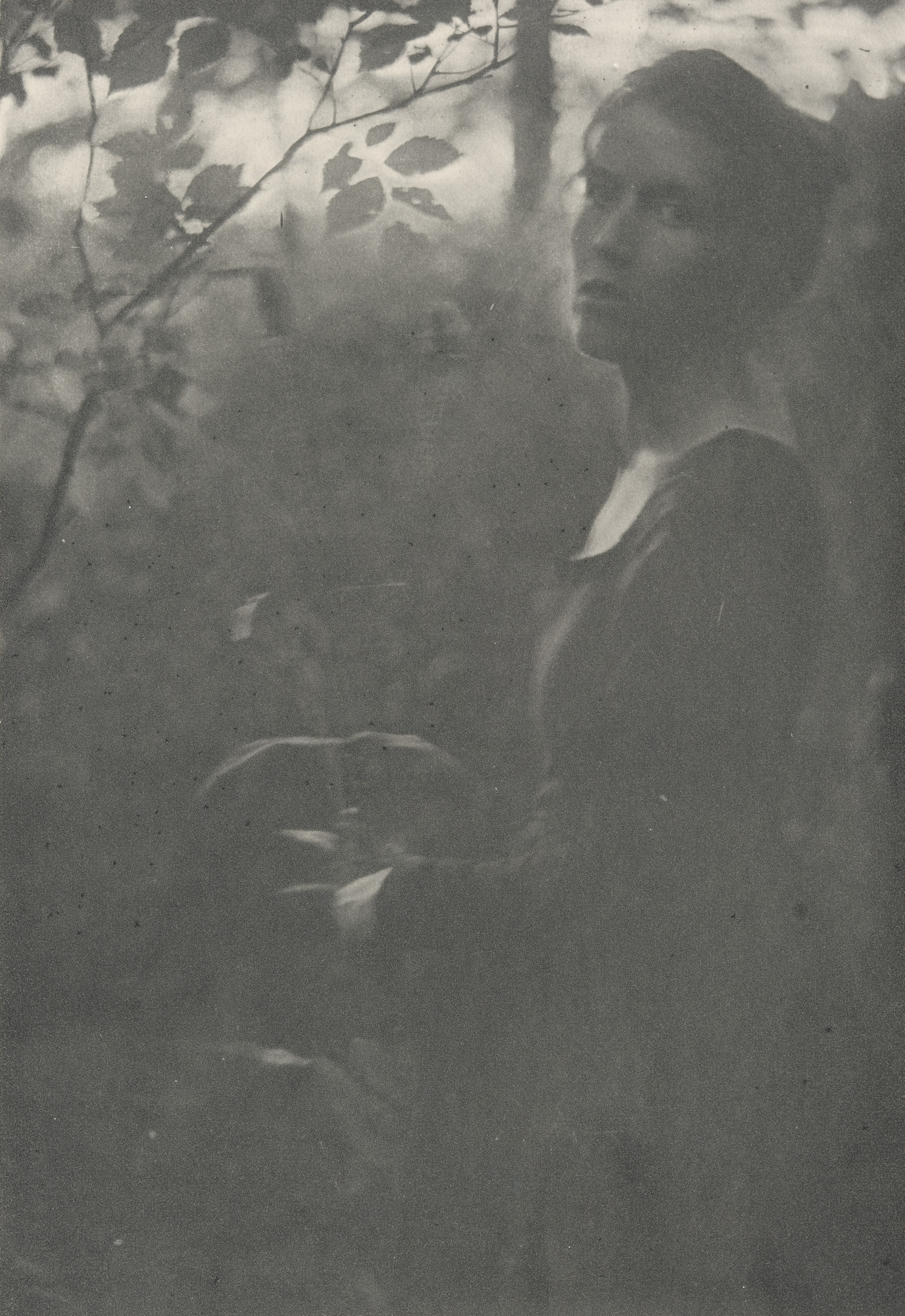Clarence H. White. Edge of the Woods. 1901