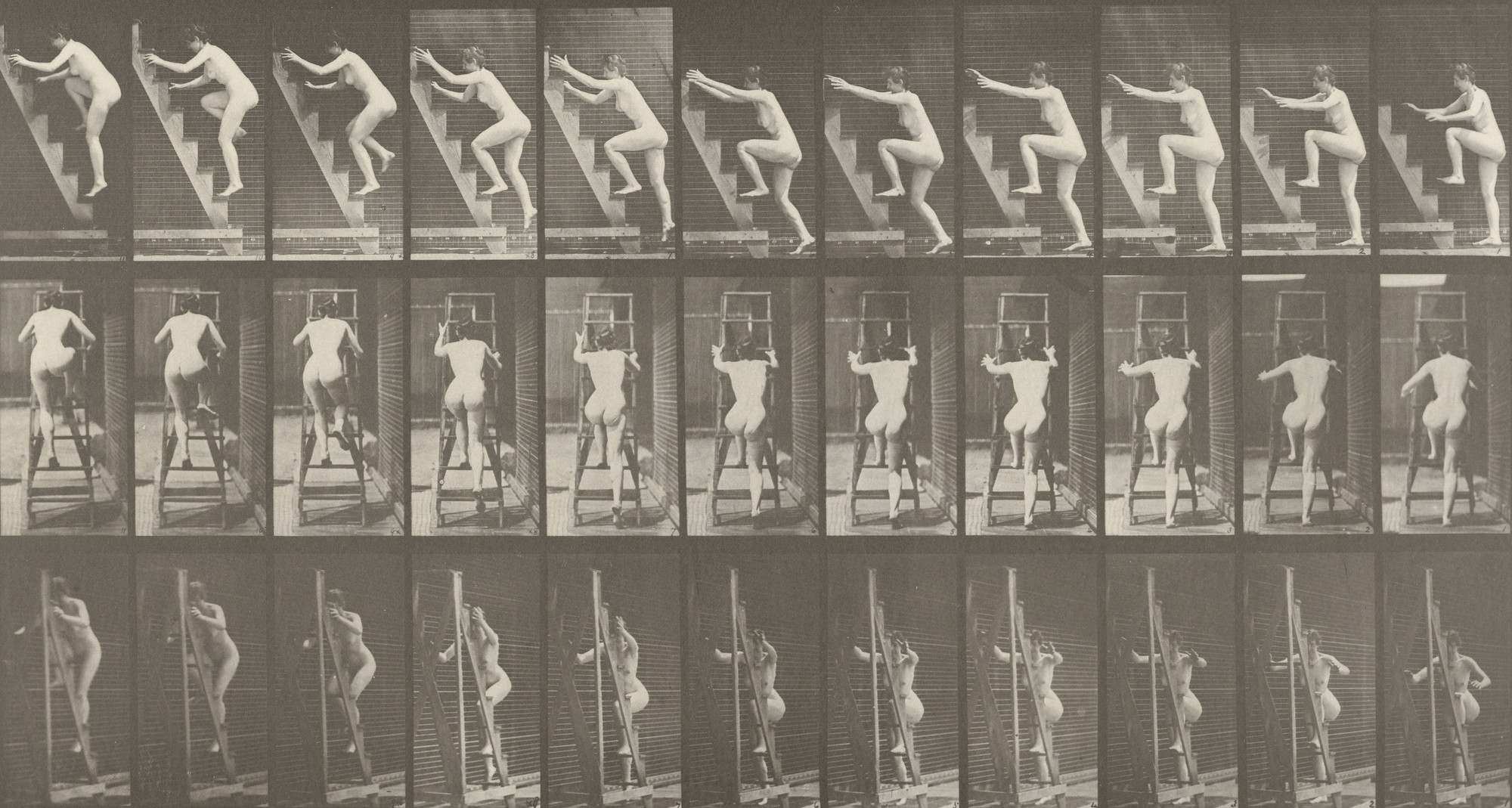 Eadweard J. Muybridge. Woman Ascending a Stepladder Two Steps at a Time: Plate 110 from Animal Locomotion (1887). 1884-86