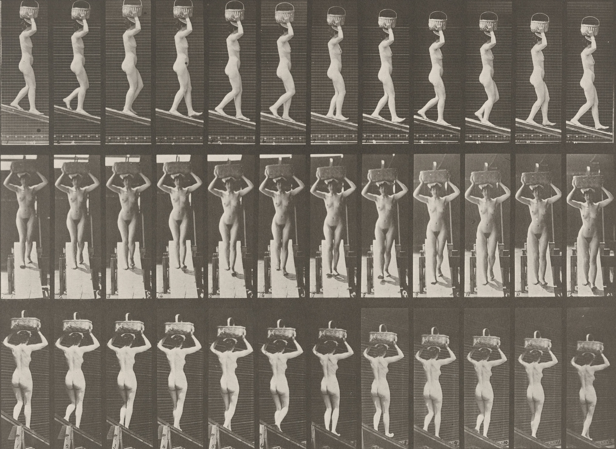 Eadweard J. Muybridge. Woman Descending an Incline with a 20-lb. Basket on Head, Hands Raised: Plate 124 from Animal Locomotion (1887). 1884-86