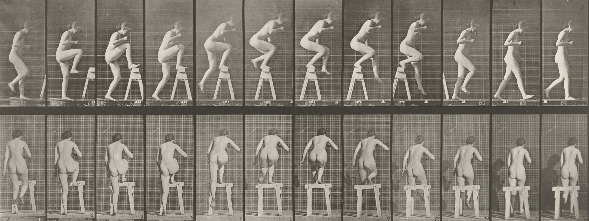 Eadweard J. Muybridge. Woman Stepping on and over a Trestle: Plate 178 from Animal Locomotion (1887). 1884-86