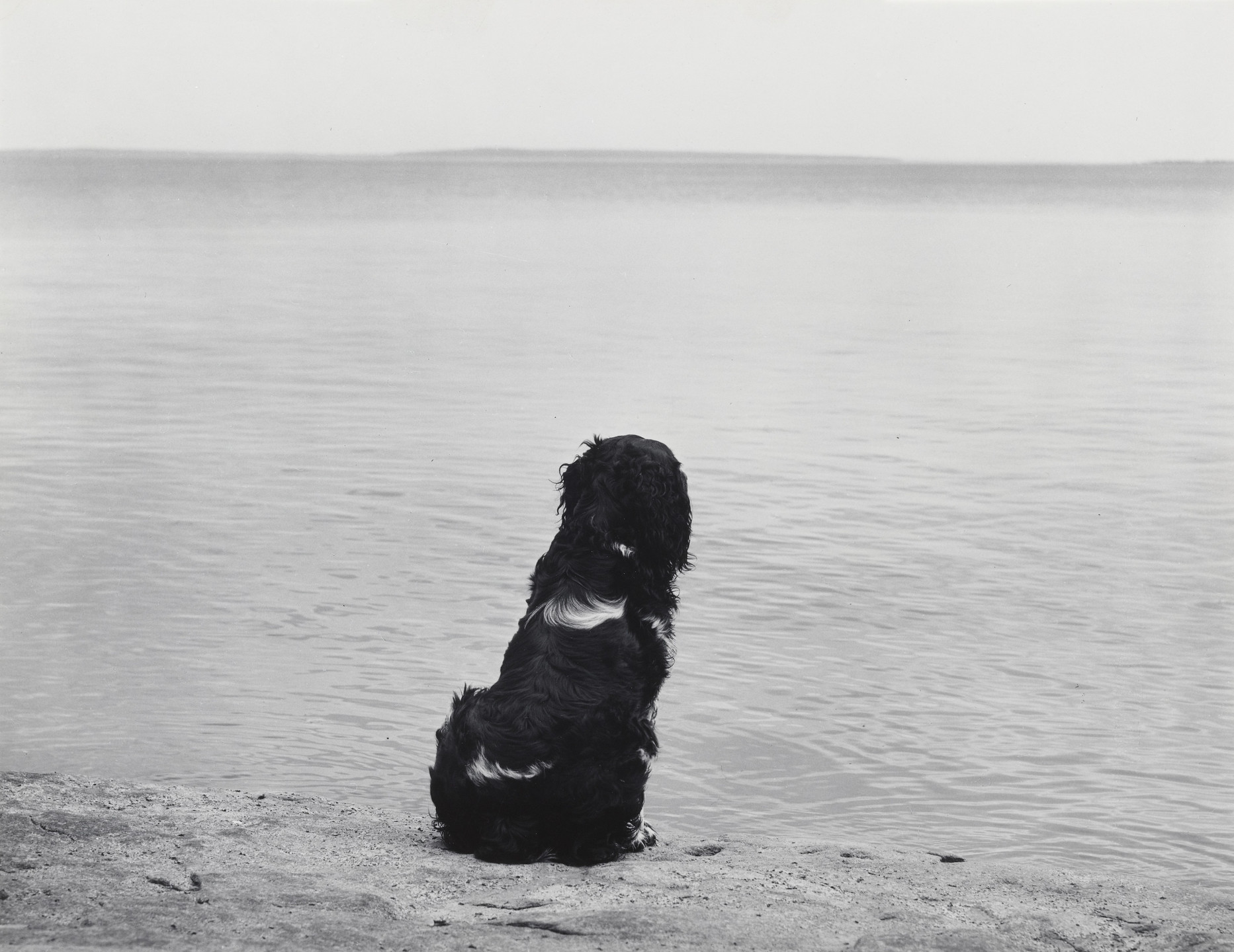 John Szarkowski. Mathew Brady and Lake Superior. 1959