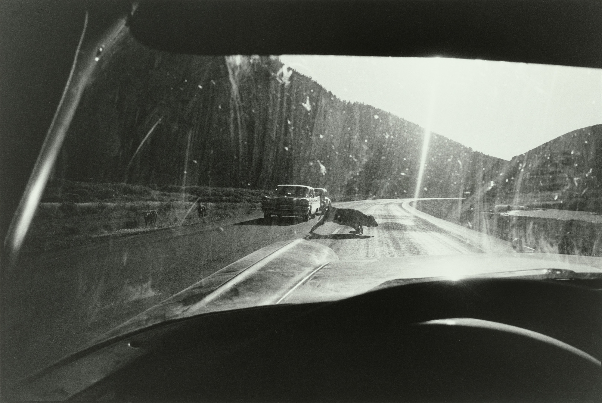 Garry Winogrand. Wyoming. 1964