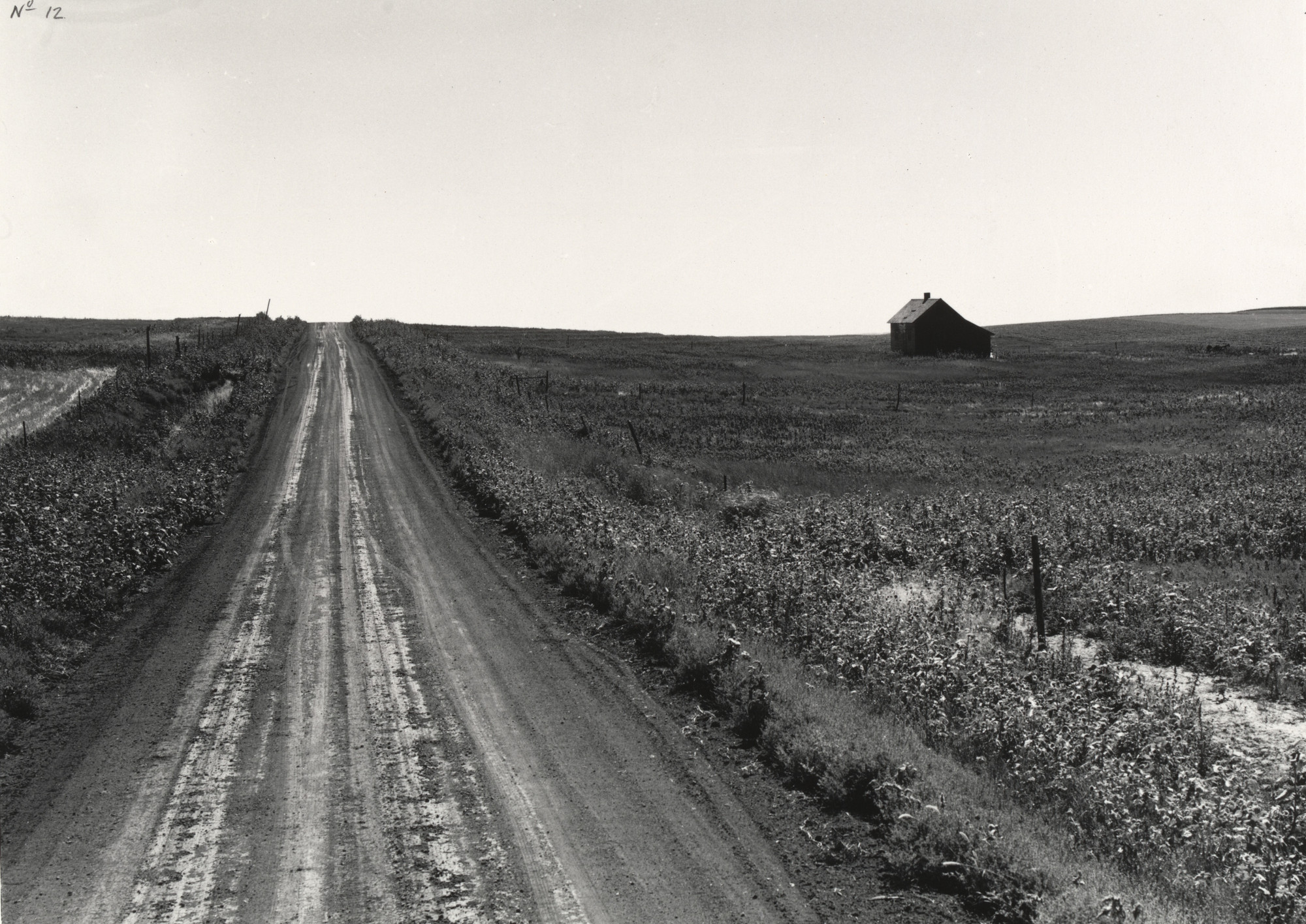 Dorothea Lange. Road on the Great Plains. 1941