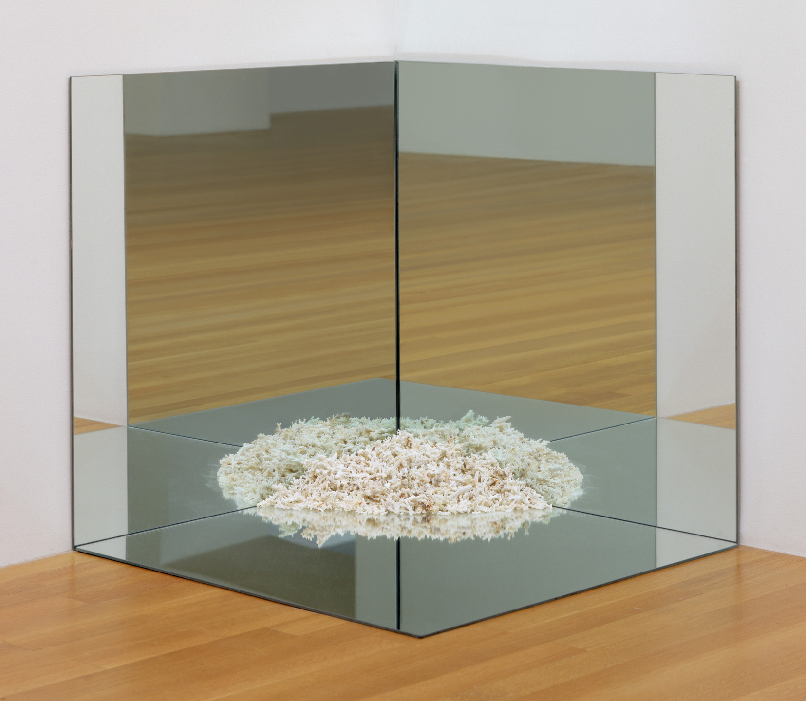 Robert Smithson. Corner Mirror with Coral. 1969