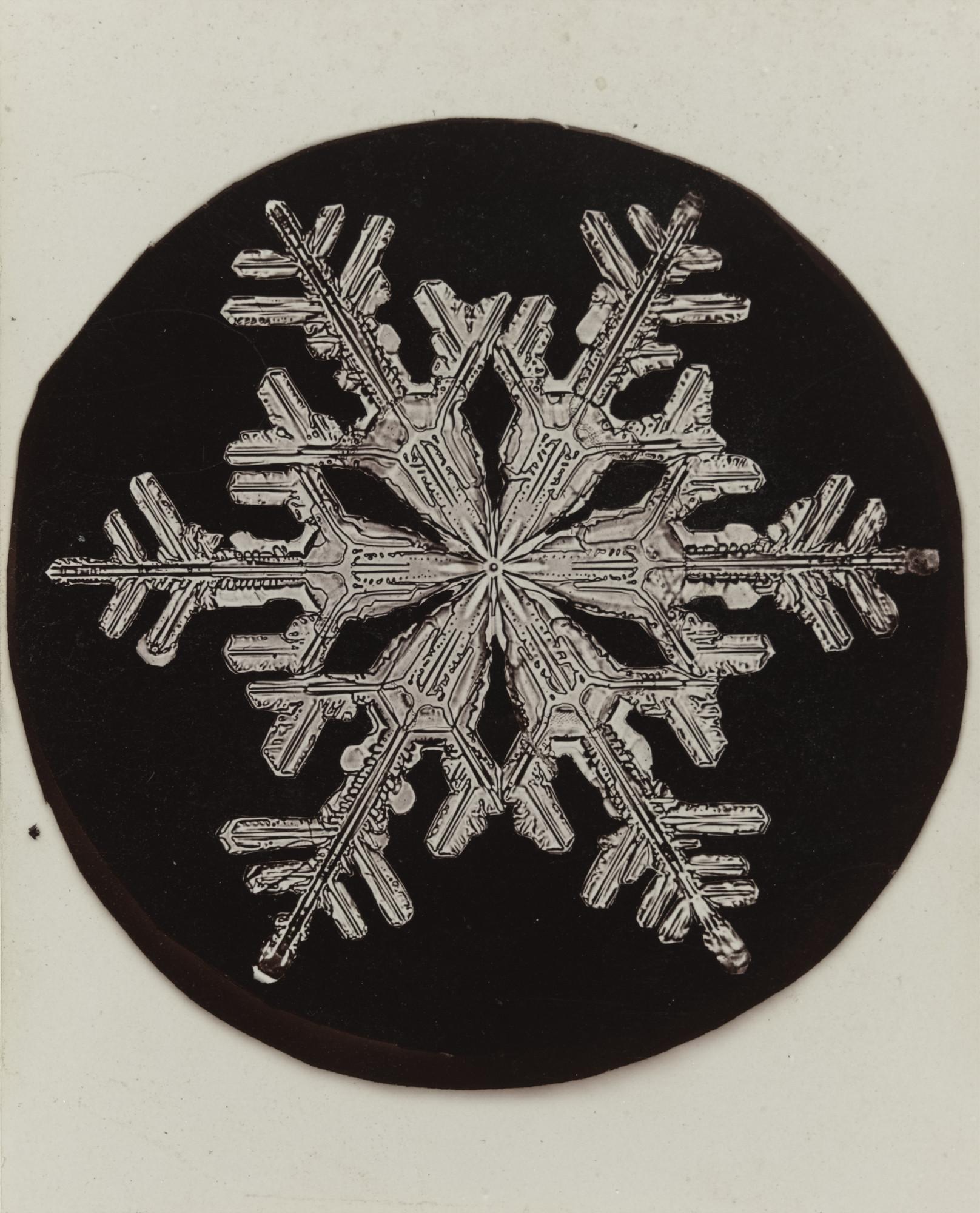 Wilson A Bentley Snowflake C 1905 Moma