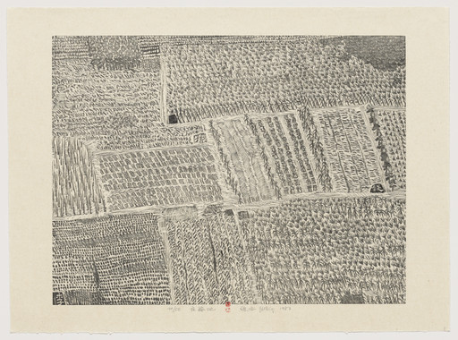 Xu Bing. Cropland from Series of Repetitions. 1987