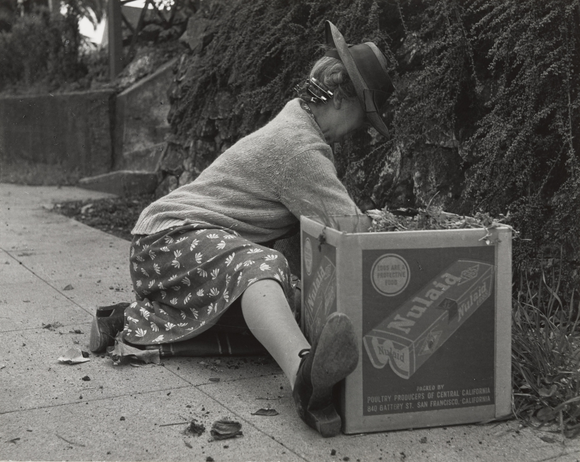 Dorothea Lange. Spring in Berkeley. 1952