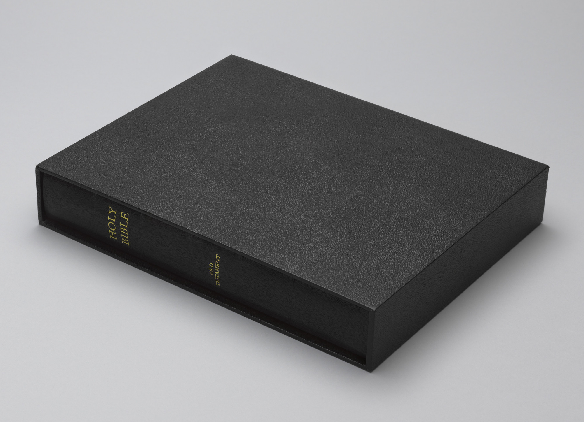 David Hammons. The Holy Bible: Old Testament. 2002