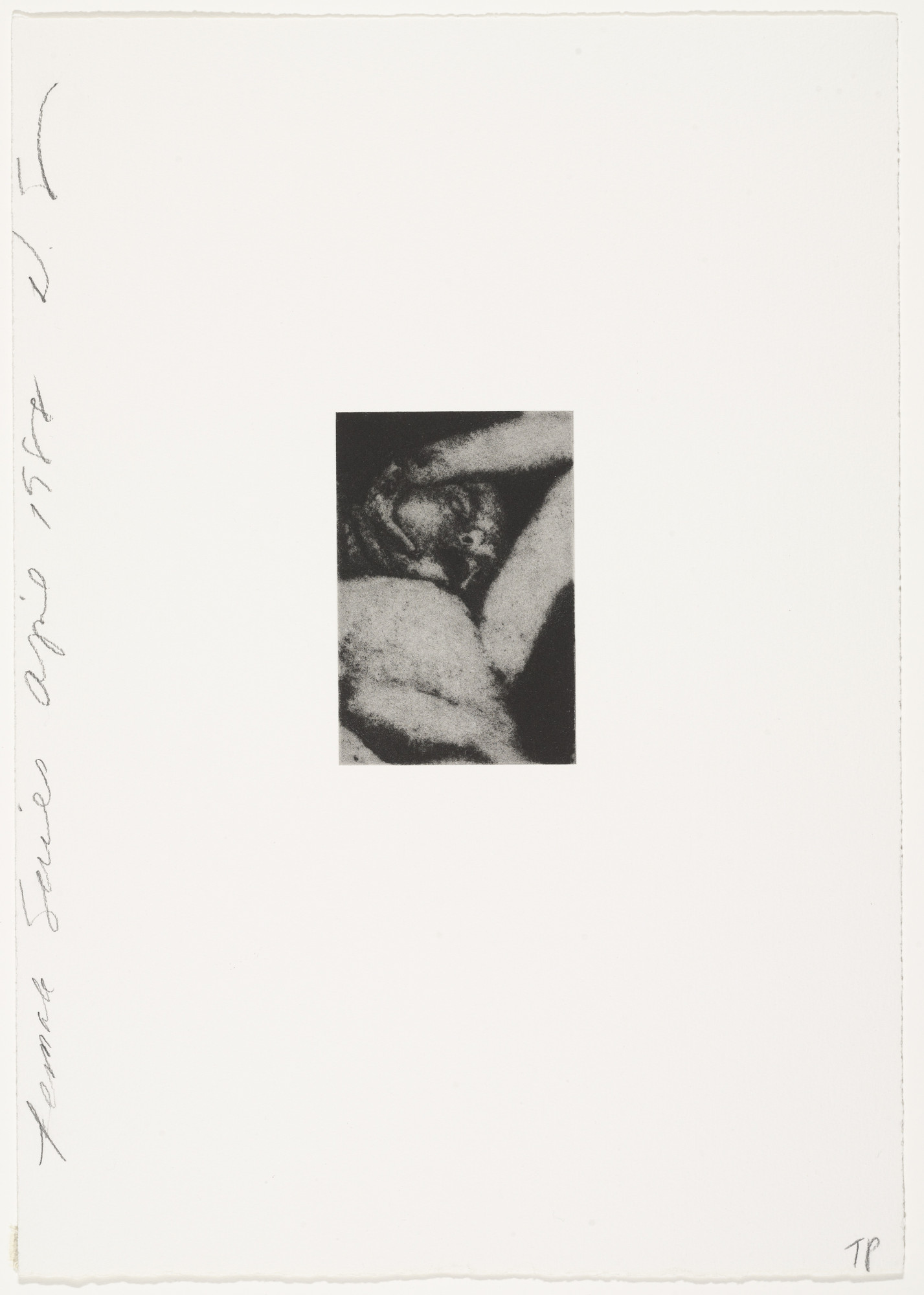 Donald Sultan. Untitled from the Female Series. April 1988. | MoMA