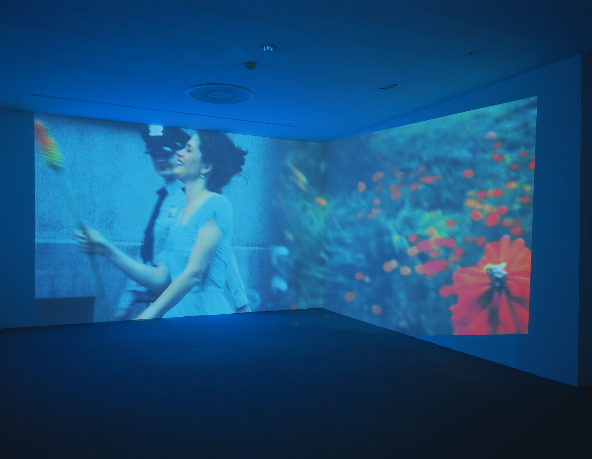 Pipilotti Rist. Ever Is Over All. 1997