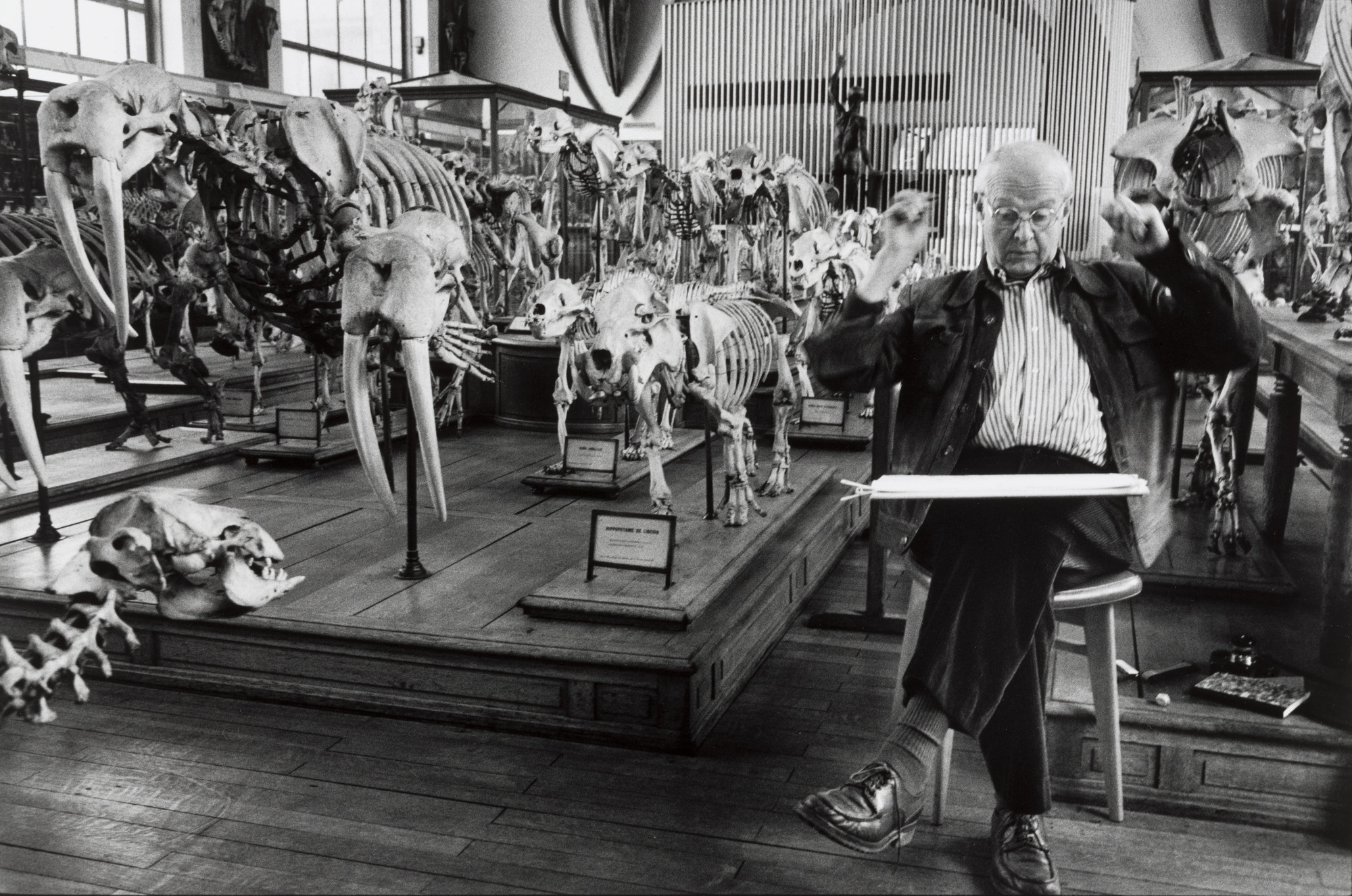 Martine Franck. Henri Cartier-Bresson at the Natural History Museum, Paris. c. 1992