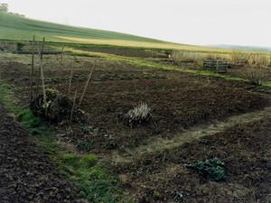 Field, Härtsfeld/Schwäbische Alb