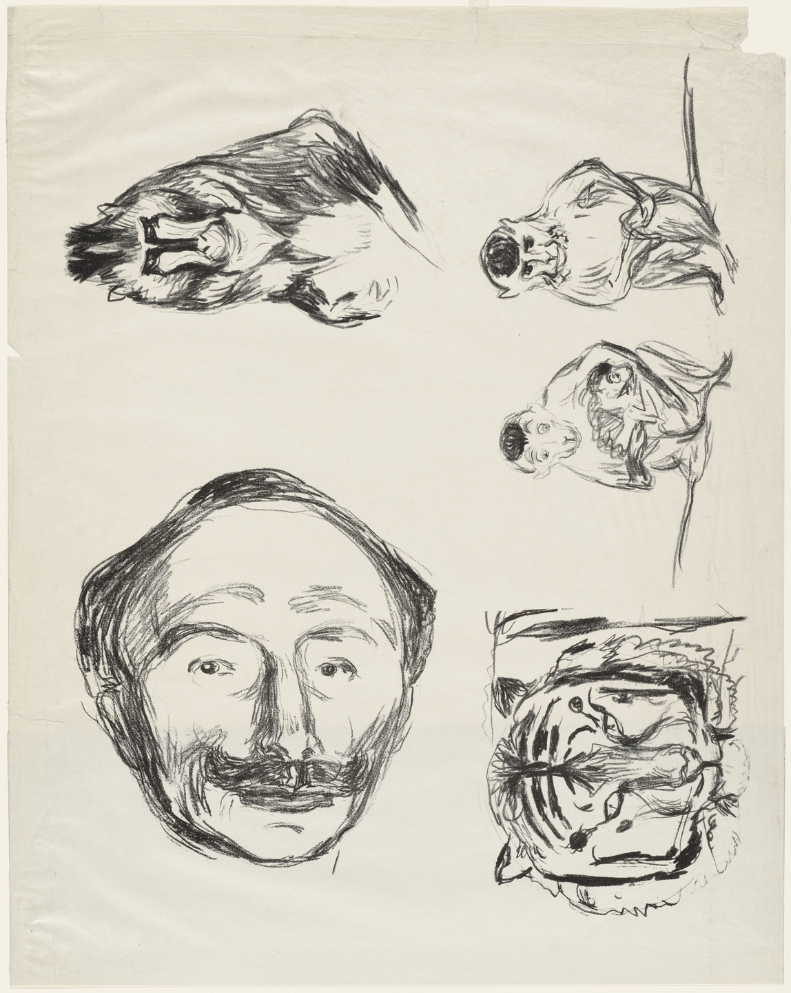 Edvard Munch. Four Studies (Portrait of Goldstein, Gorilla, Family of Monkeys and Tiger's Head). 1908-09
