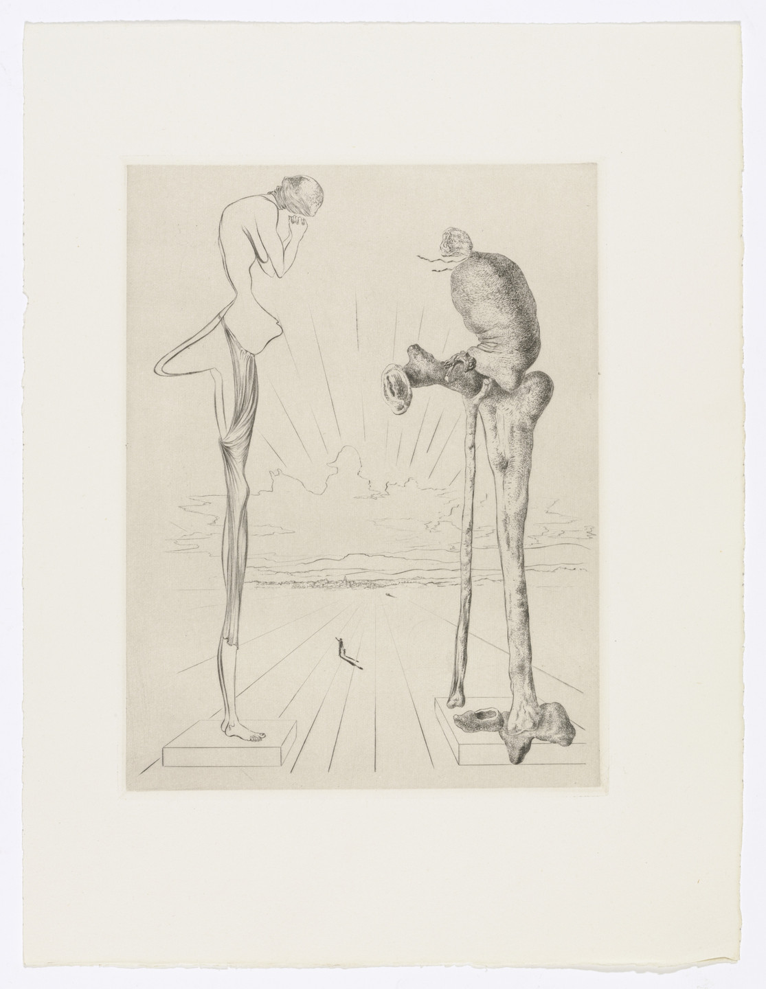 Salvador Dalí. Plate (facing page 96) from Les Chants de Maldoror (The Songs of Maldoror). 1934