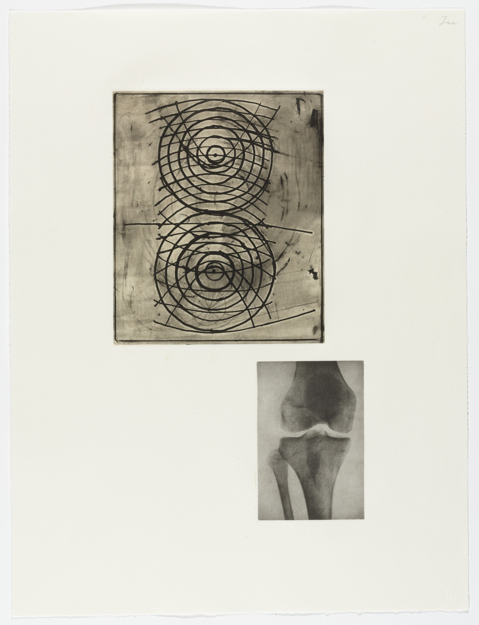 Terry Winters. Fourteen Etchings 12. 1989
