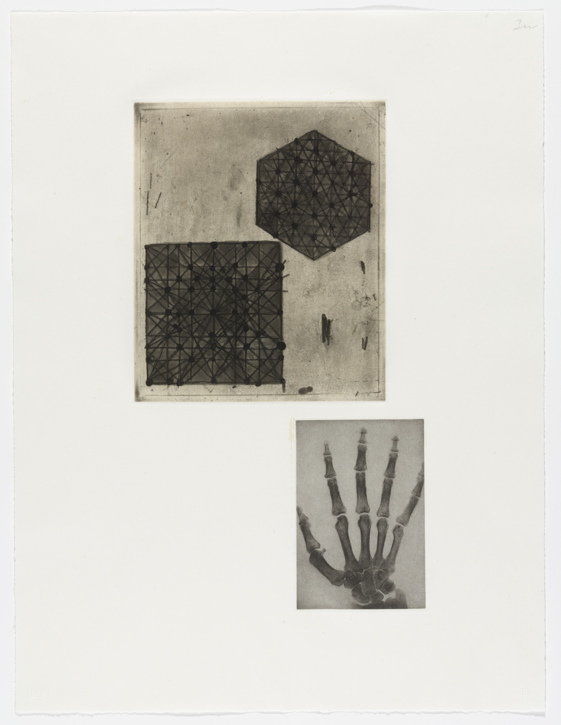 Terry Winters. Fourteen Etchings 10. 1989