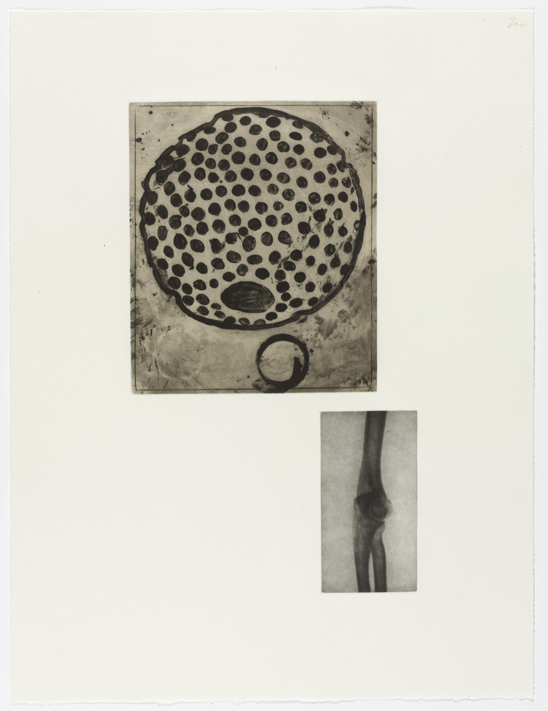 Terry Winters. Fourteen Etchings 8. 1989