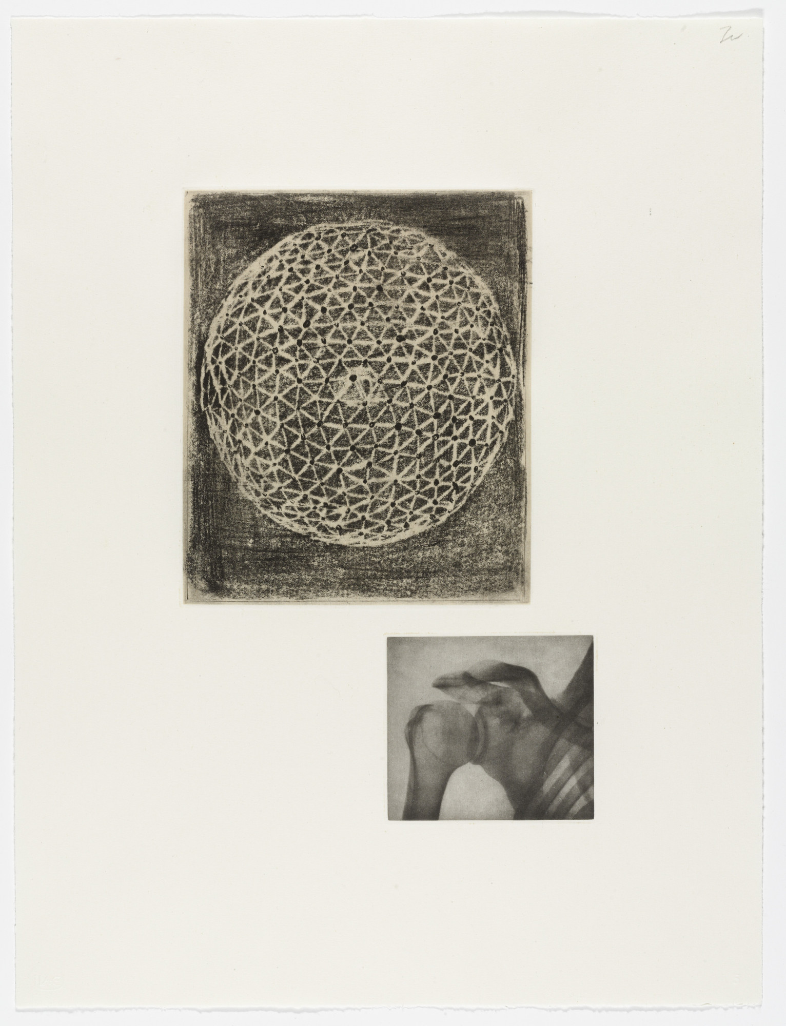 Terry Winters. Fourteen Etchings 5. 1989