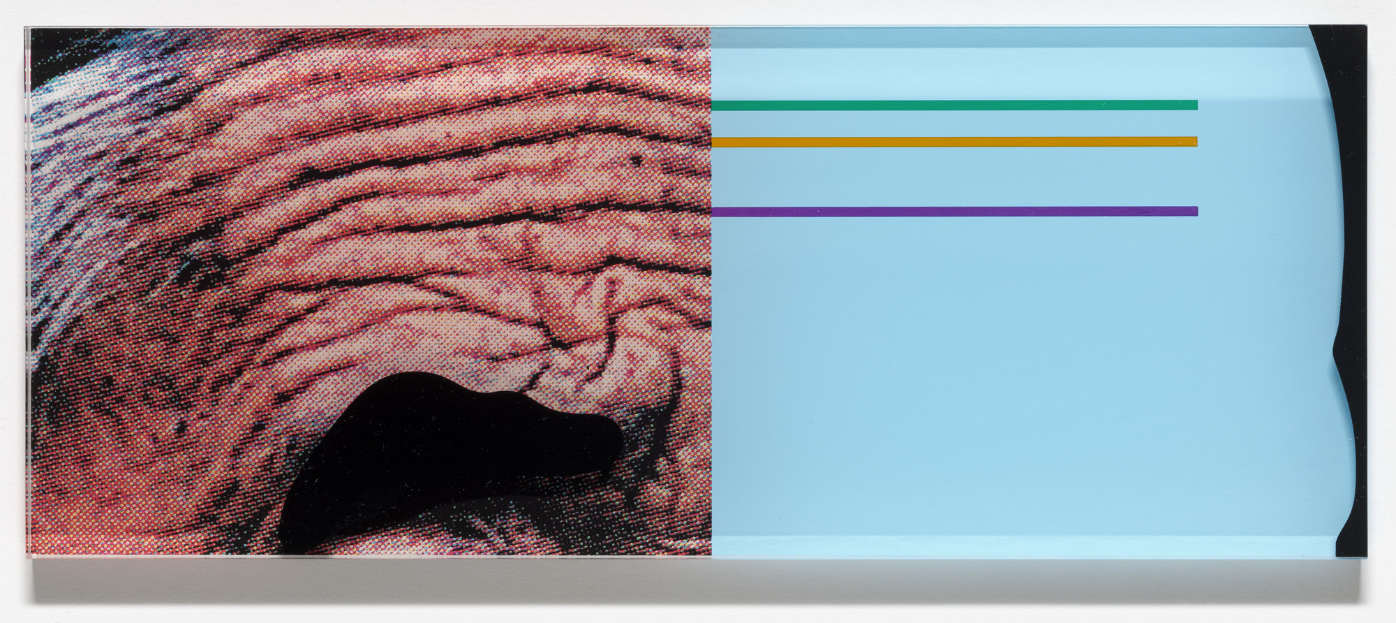 John Baldessari. Raised Eyebrows/Furrowed Foreheads: Crooked Made Straight (for Parkett no. 86). 2009