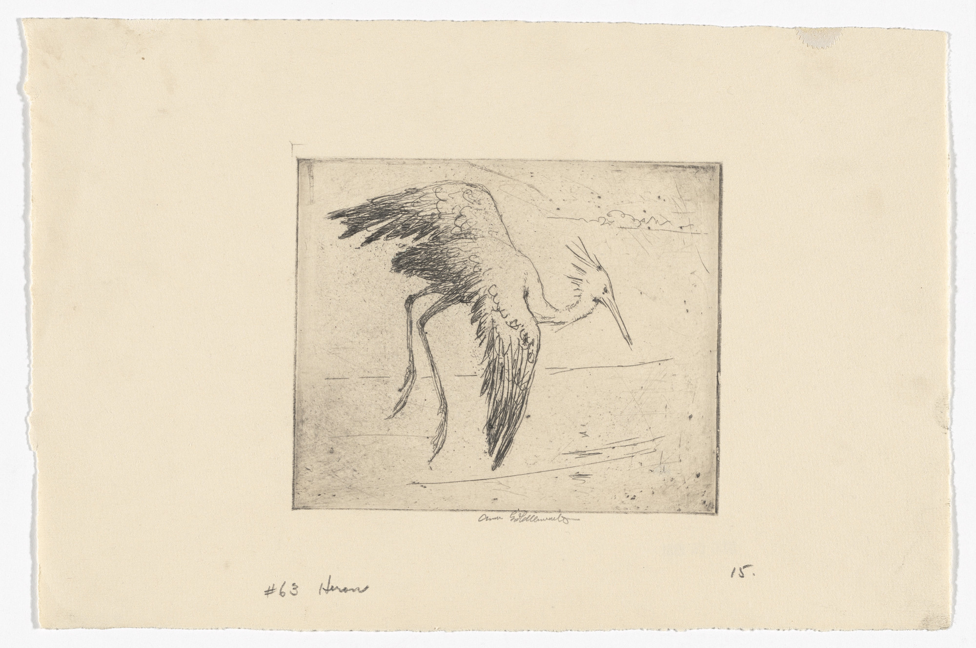 Anne Goldthwaite. Heron Rising Over the Alabama. c. 1929