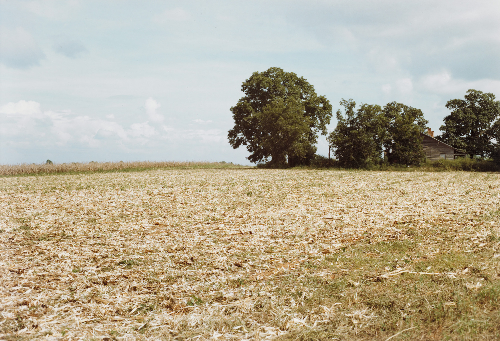 William Eggleston. Between Plains and Friendship, Georgia. 1976