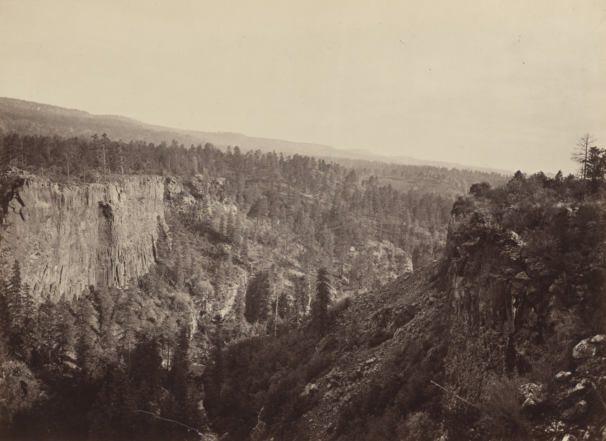 Timothy O'Sullivan. North Fork Canyon, Sierra Blanca Creek, Arizona. Seasons of 1871, 1872 and 1873