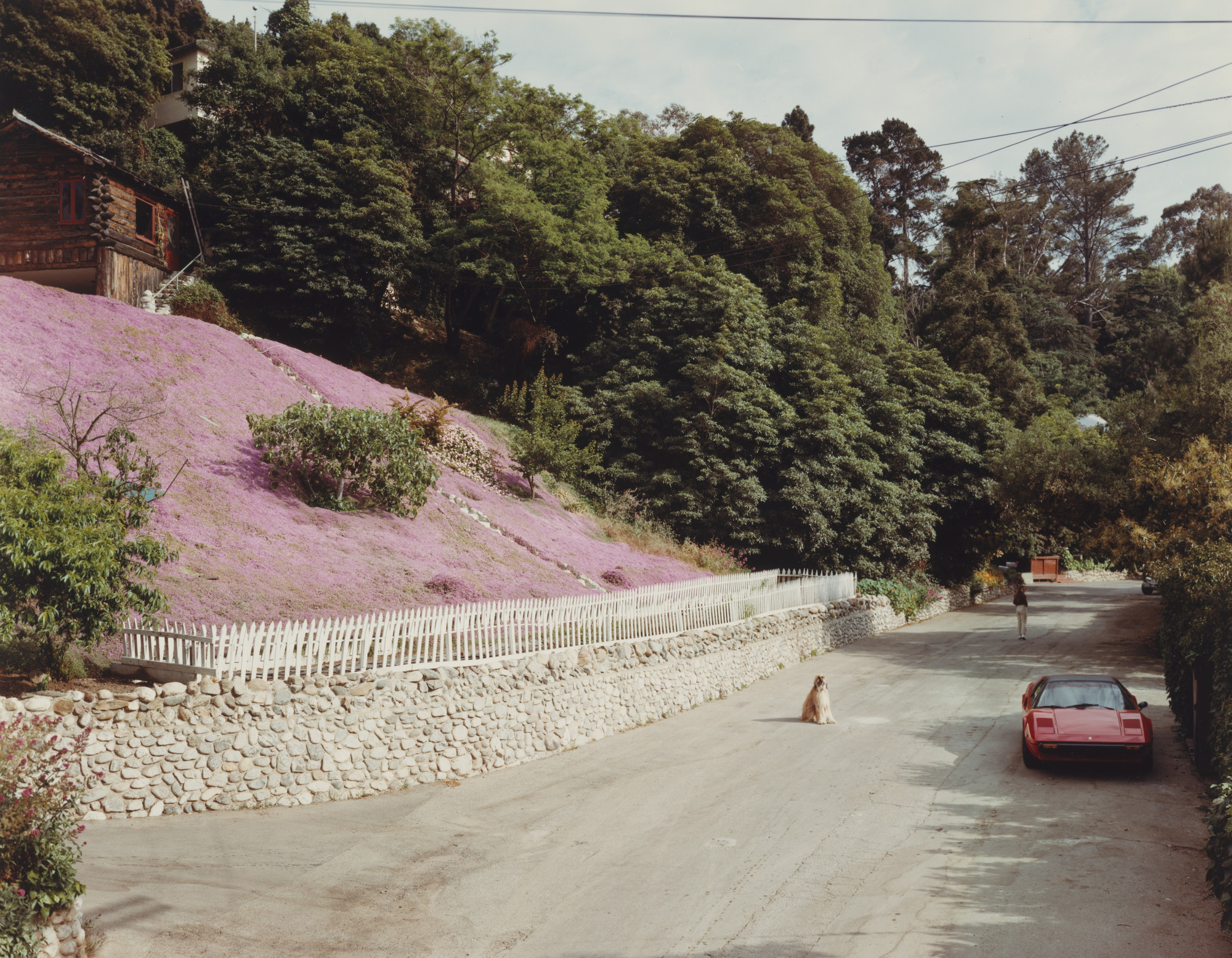 Joel Sternfeld Rustic Canyon Santa Monica California May 1979