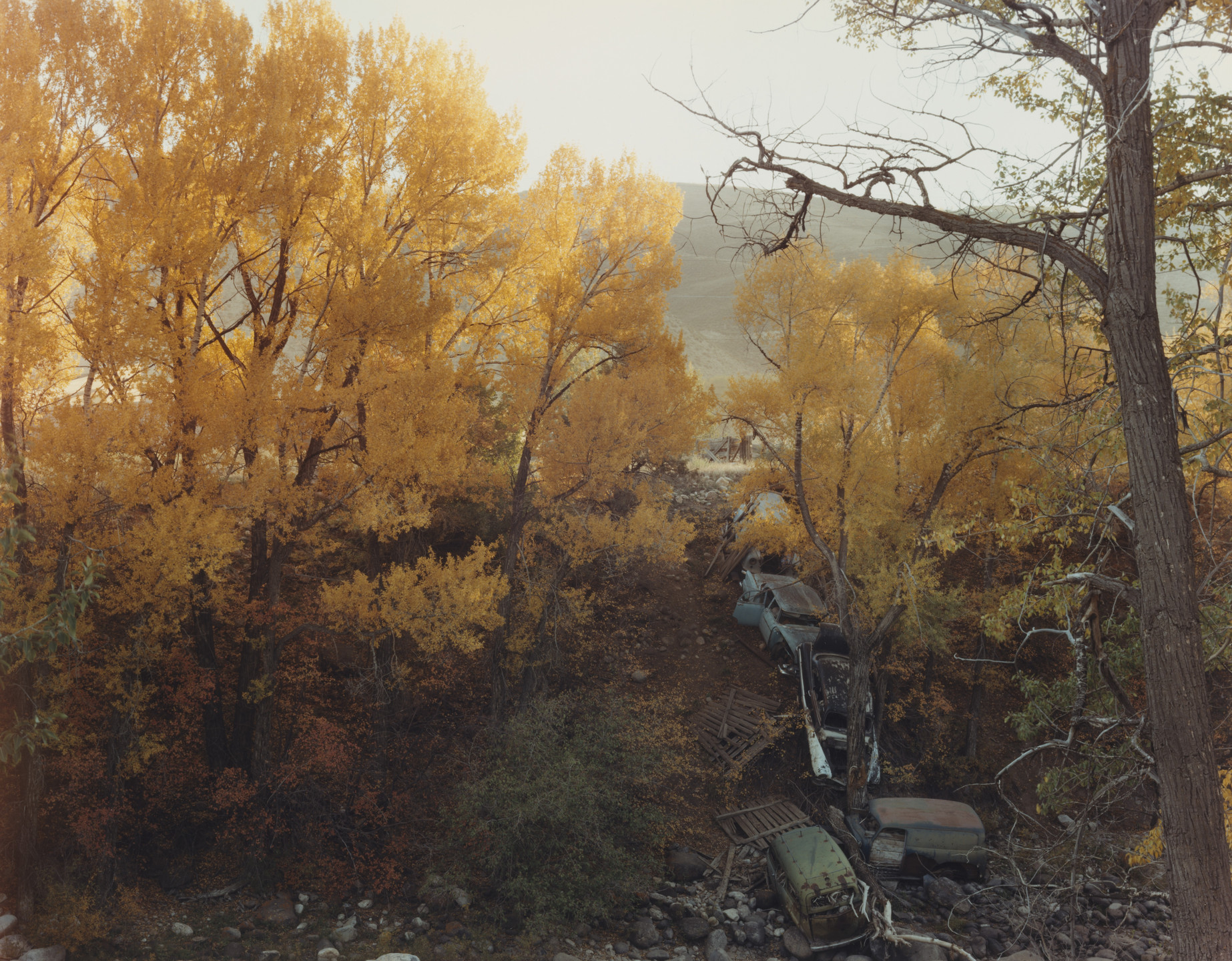 Joel Sternfeld. Near Vail, Colorado. October 1980
