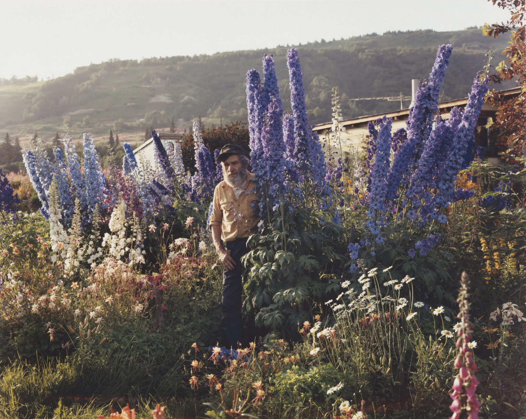 Joel Sternfeld. A Blind Man in His Garden, Homer, Alaska. July 1984