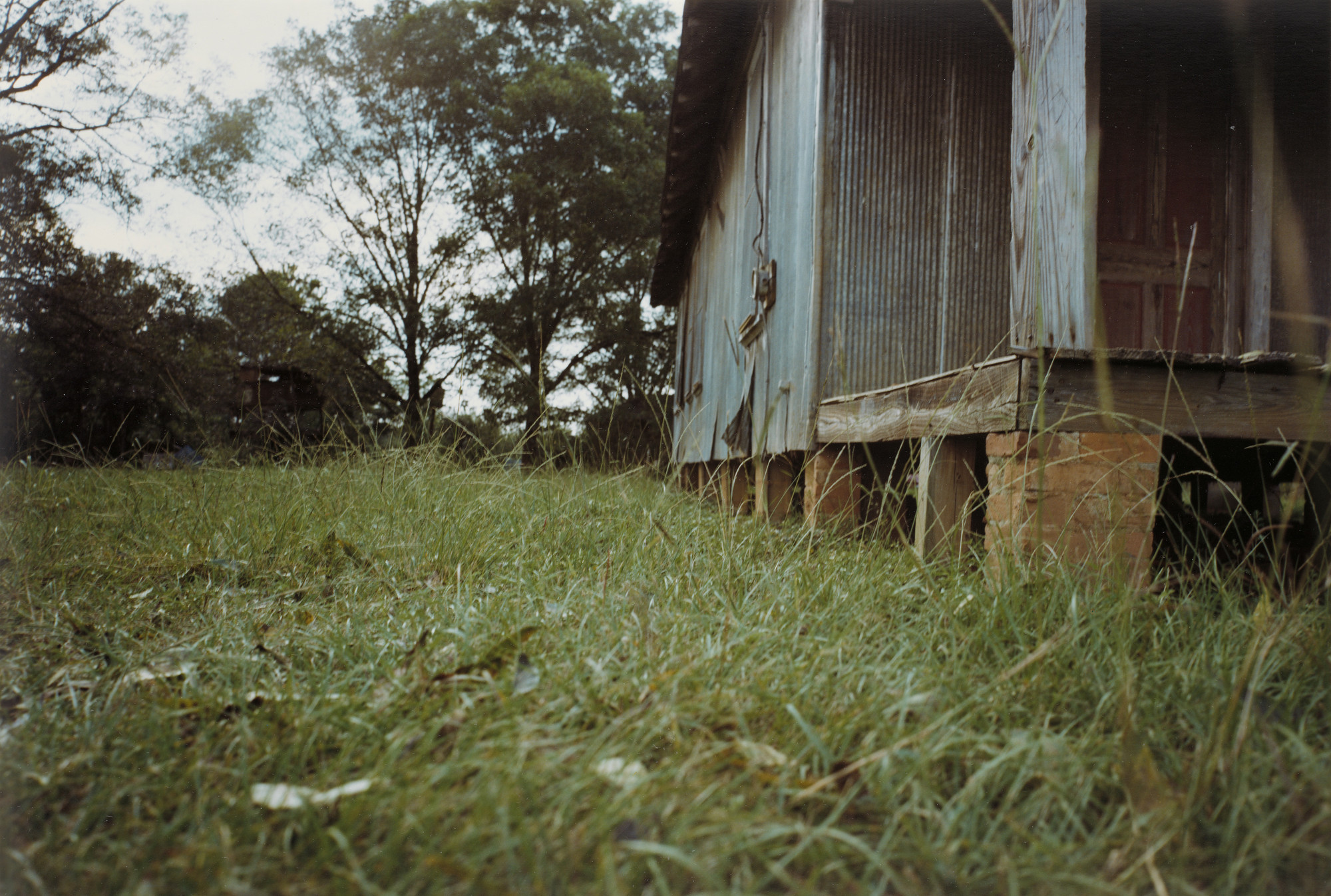William Eggleston. Side Yard, Unkempt House, Plains, Georgia. 1976